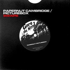 Papernut Cambridge, Picturebox 歌手頭像