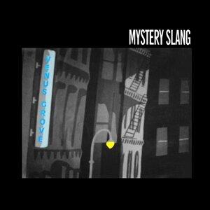 Mystery Slang 歌手頭像