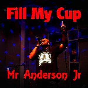 Mr Anderson Jr 歌手頭像