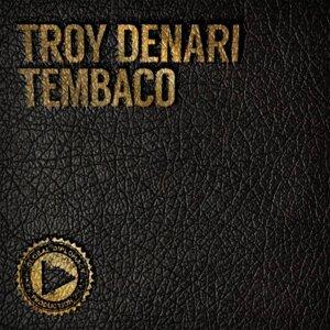 Troy Denari, N'Dinga Gaba 歌手頭像