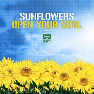 Sunflowers 歌手頭像