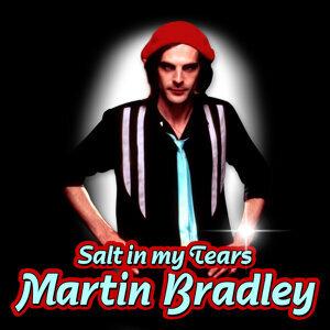 Martin Briley 歌手頭像