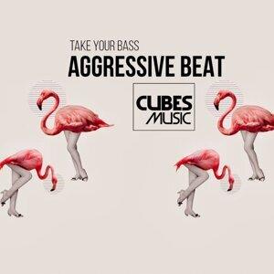 Aggressive Beat 歌手頭像