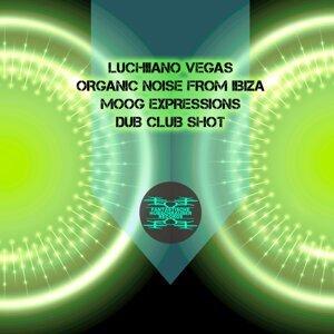 Luchiiano Vegas, Organic Noise From Ibiza 歌手頭像