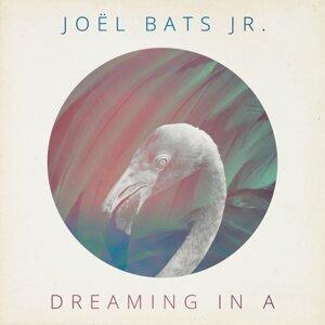 Joël Bats Jr. 歌手頭像