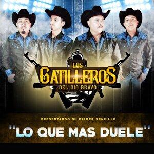 Los Gatilleros Del Rio Bravo 歌手頭像