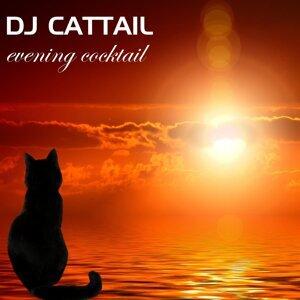 DJ Cattail 歌手頭像