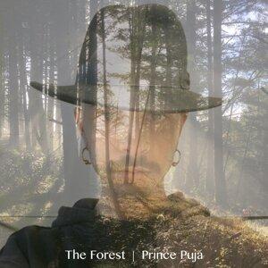 Prince Puja 歌手頭像