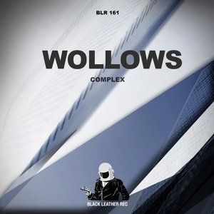 Wollows 歌手頭像