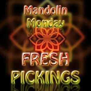 Mandolin Monday 歌手頭像