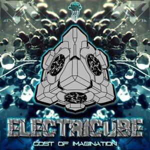 Electricube 歌手頭像