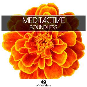MeditActive 歌手頭像