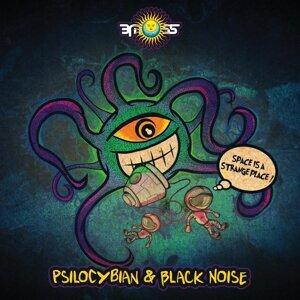 PsiloCybian & Black Noise (GR) 歌手頭像
