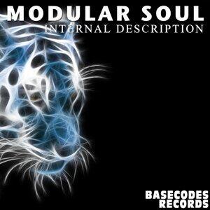Modular Soul 歌手頭像