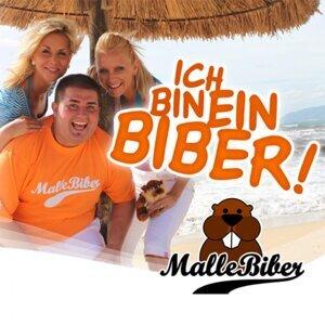 MalleBiber 歌手頭像