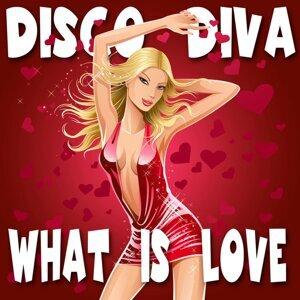 Disco Diva 歌手頭像