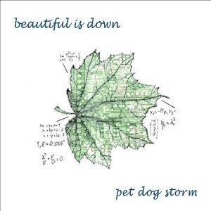Pet Dog Storm 歌手頭像