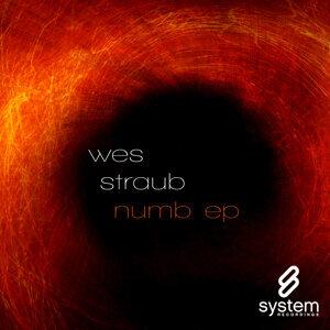 Wes Straub feat. Rob Curtis 歌手頭像
