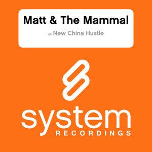 Matt & The Mamal 歌手頭像