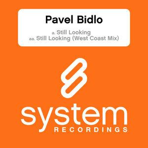 Pavel Bidlo 歌手頭像