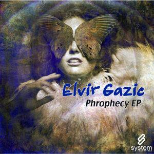 Elvir Gazic 歌手頭像