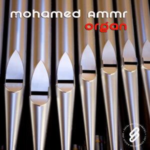 Mohamed Ammr 歌手頭像