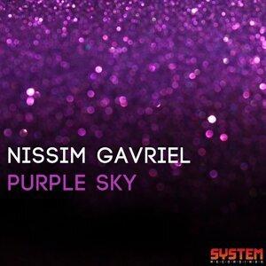 Nissim Gavrie 歌手頭像