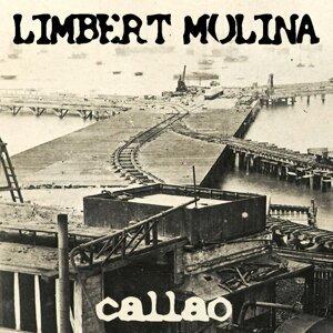 Limbert Molina 歌手頭像