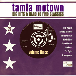 Big Motown Hits & Hard To Find Classics 歌手頭像