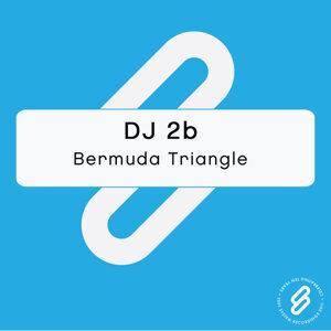 DJ 2b 歌手頭像