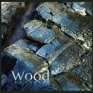 Wood 歌手頭像