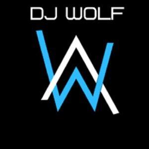 DJ Wolf 歌手頭像