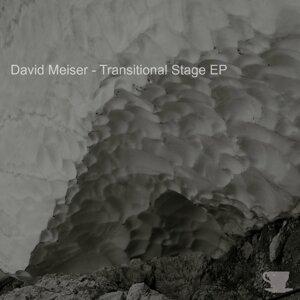 David Meiser 歌手頭像
