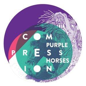 Purple Horses 歌手頭像