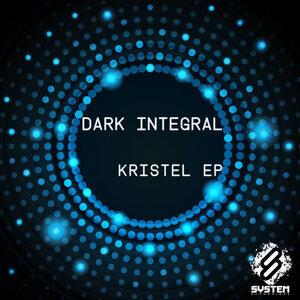 Dark Integral 歌手頭像