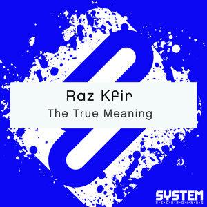 Raz Kfir 歌手頭像