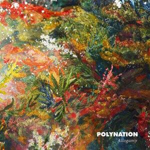 Polynation 歌手頭像