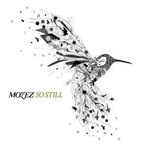 Mozez 歌手頭像