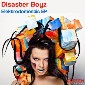 Disaster Boyz 歌手頭像