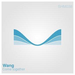 Wang 歌手頭像