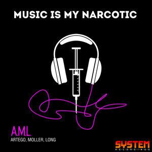A.M.L. 歌手頭像