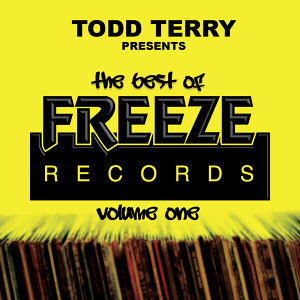 Todd Terry, Todd Terry Project 歌手頭像