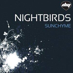 Nightbirds 歌手頭像