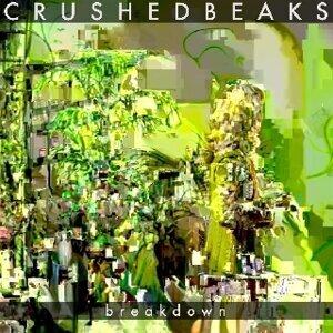 Crushed Beaks 歌手頭像
