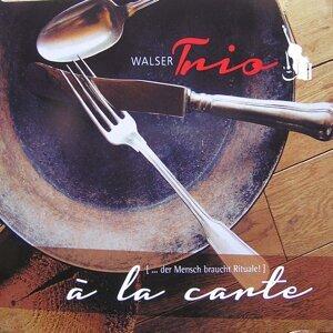 Walser-Trio 歌手頭像
