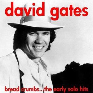 David Gates (大衛蓋茲)