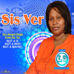 Sis Ver 歌手頭像