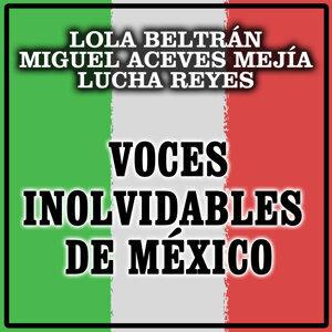 Lola Beltrán, Miguel Aceves Mejía, Lucha Reyes 歌手頭像
