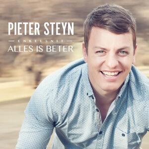 Pieter Steyn 歌手頭像