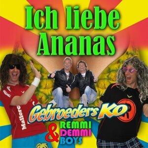 Gebroeders Ko & Remmi Demmi Boys 歌手頭像